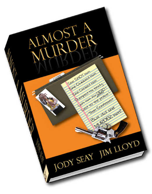 Almost A Murder media kit front cover image